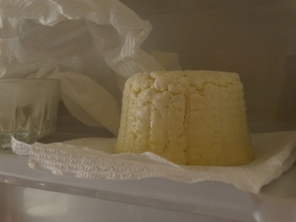 Our cheese aging in the fridge.